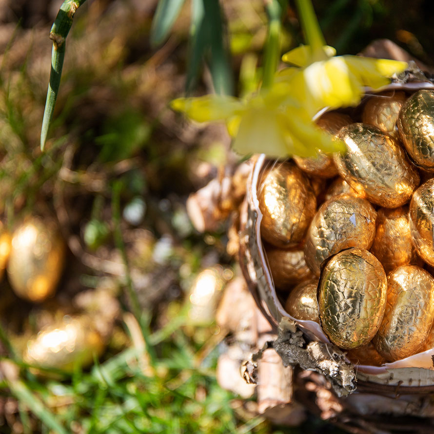 Schoko-Ostereier im Garten